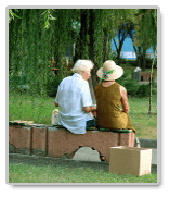 Essays on Problems of Old Age: Is Everything that Bad?