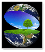 Environmental protection essays