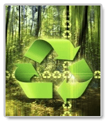 Essays on Recycling – Free Guidelines