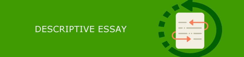Types of Essays: 8 Main Kinds of Essays for Your Success